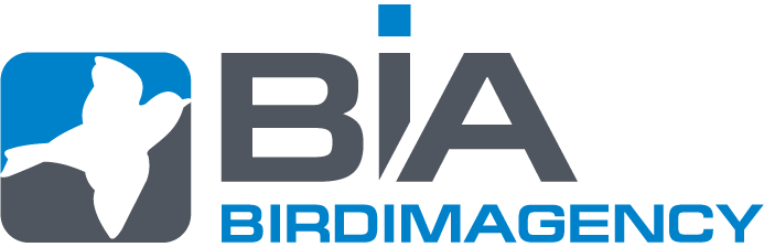 Spezial-Bildagentur für Vogelfotografien