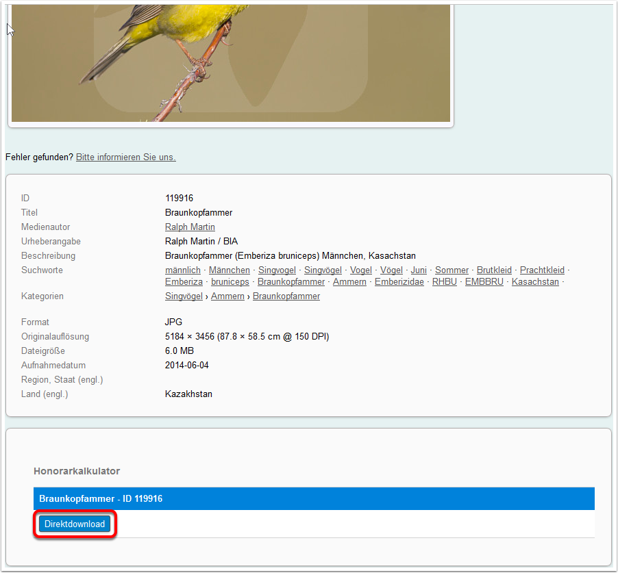 directdownload_detail_de.png
